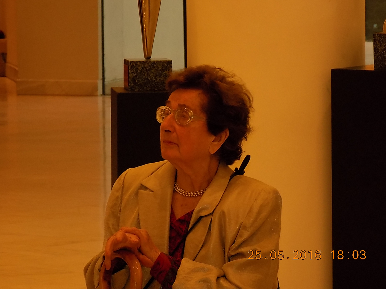 Irina Lucaci la vernisajul C. Lucaci de la TNB 27 05 16